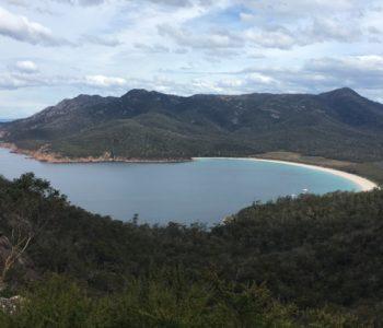 オーストラリアの山林